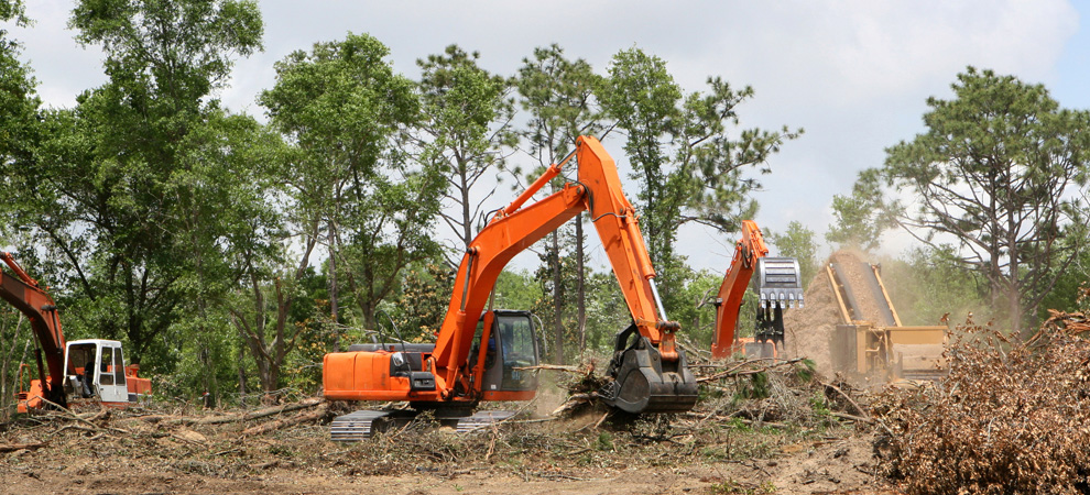 Yorktown Heights Land Clearing