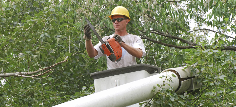 Somers Tree Service